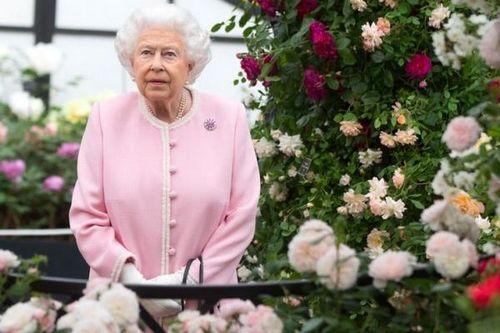 Елизавета ii уверена, что меган маркл не справится с обязанностями герцогини