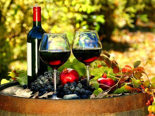 Французское молодое вино божоле: история и вкусовые особенности