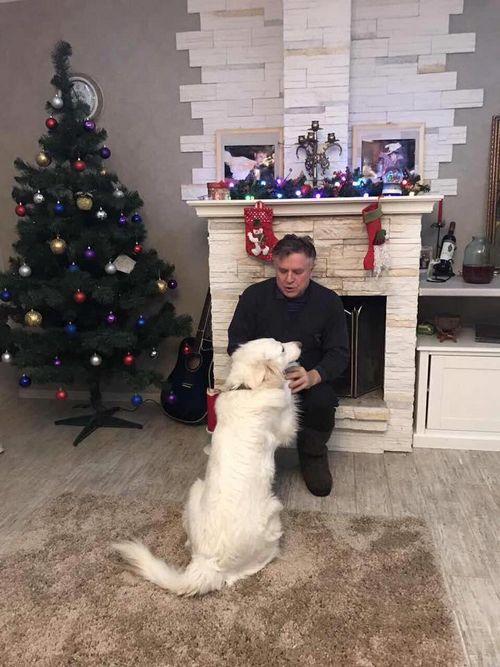 Григорий гладков достраивает дом