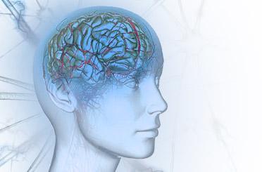 Игры для стимуляции мозговой деятельности