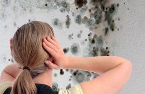 Как избавиться от грибка в ванной комнате и другие советы по уходу за потолком
