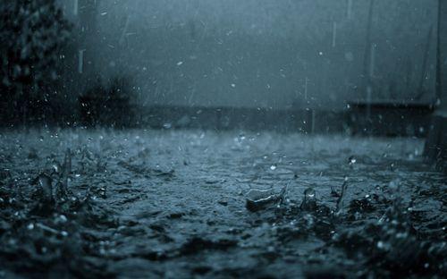 Концерт u2: дождь музыке не помеха