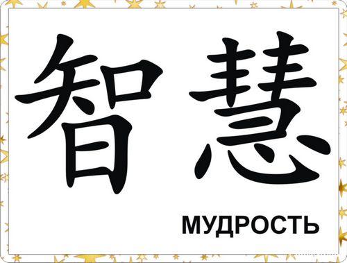 Кулинарный талант: полина киценко и другие на презентации книг ники белоцерковской