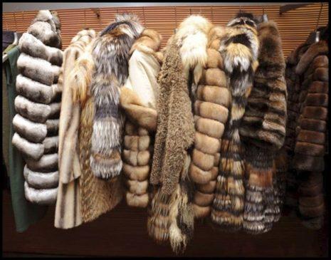 Меховая одежда – роскошь комфорта