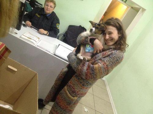 Наталья лесниковская занялась устройством жизни бездомных животных