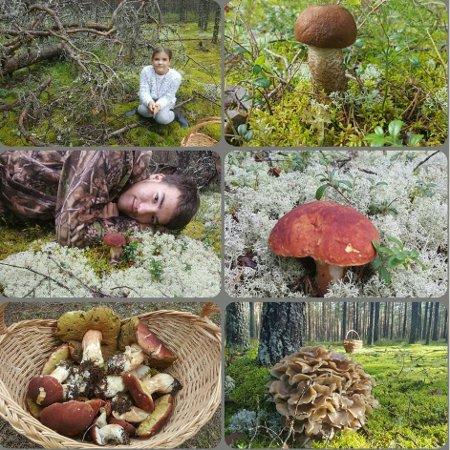 Николай валуев отправил своих детей в лес