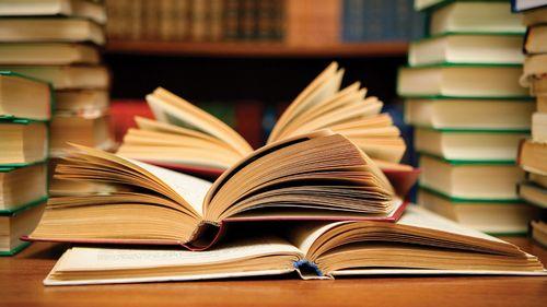 Пионерские чтения: новый сезон