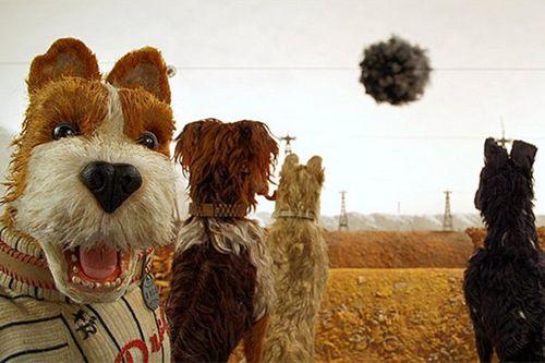 Рецензия на фильм «остров собак»: не детский мультфильм, который поднимает слишком много серьезных тем