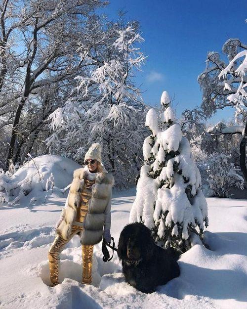 Собака по кличке лорд яны рудковской покусала несколько человек, охраняя свою территорию