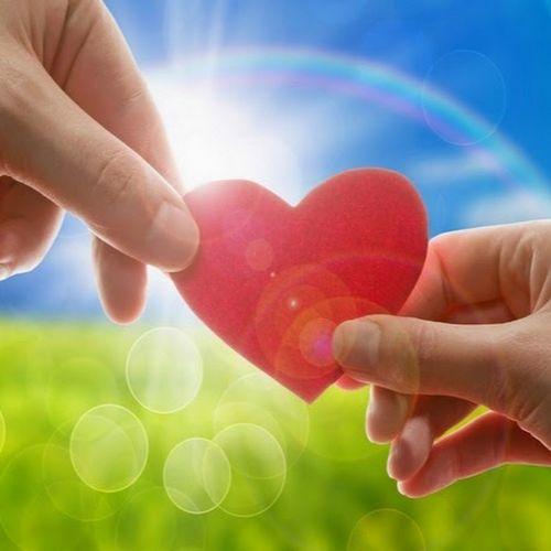 Светлана камынина: «доброта — это самый главный талант»