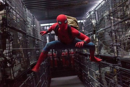 В кино на этой неделе: новый человек-паук, памела андерсон в лечебнице и михаил пореченков в поиске любви